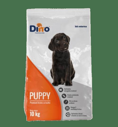 Dino Puppy